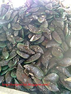 http://recipes-ku.blogspot.com/2012/04/gulai-darat-udang.html