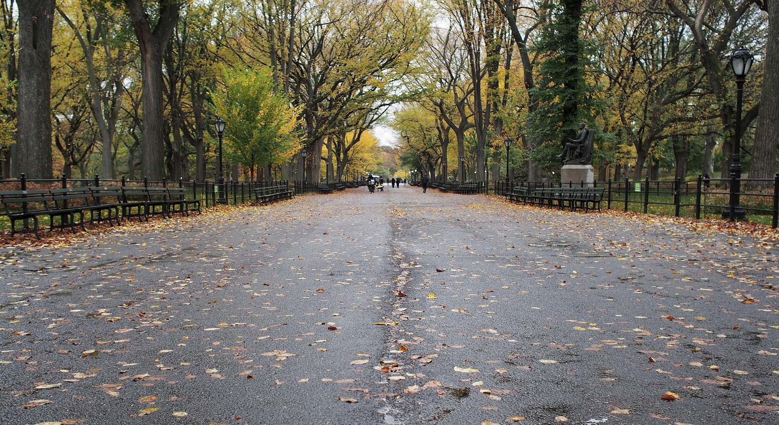 The Mall, #themall #centralpark #nyc #fall #fallfoliage #rainyday 2014 #fall #fallfoliage