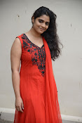Samatha photos at SSD music launch-thumbnail-2