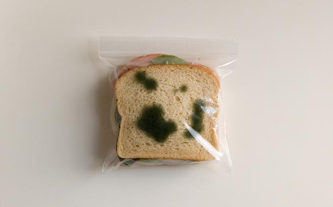 bungkusan roti berkulat