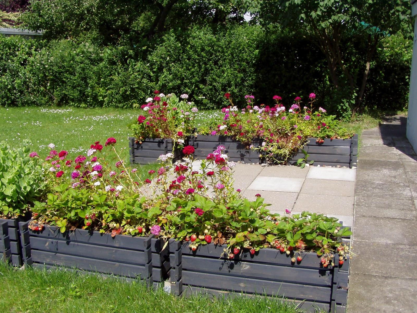 #829B30 Anbefalede Villa Bianca: Solterassen Som Blomstrende Lysthus Gør Det Selv Køkken Amager Landevej 5587 160012005587