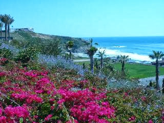 dana point vacation rental home condo