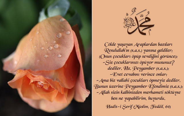 Makalah Memahami Hadis Nabi dengan Al-Qur'an