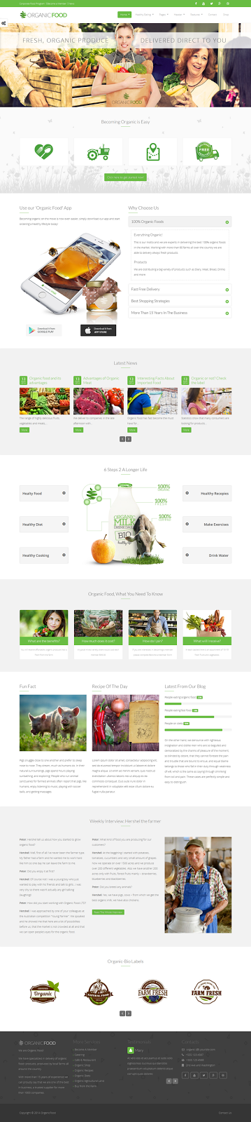 Best vegitable Responsive WordPress Theme