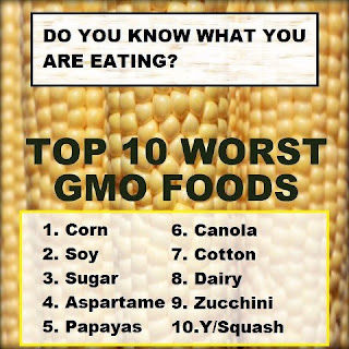 Top 10 Worst GMO Foods to Avoid Eating - Corn, Soy, Sugar, Aspartame, Papayas, Canola, Cotton, Dairy, Zucchini, Yellow Squash