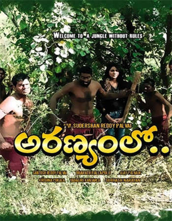 Poster Of Aranyamlo 2017 Full Movie In Hindi Dubbed Download HD 100MB Telugu Movie For Mobiles 3gp Mp4 HEVC Watch Online
