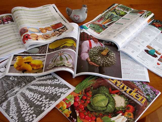 Garden Seeds And Plants Catalogs