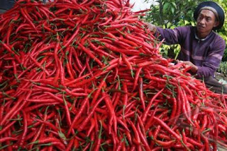 Benefits of Chili For Body Health