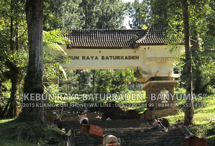 Kebun Raya Baturraden Banyumas, Foto oleh : KLIKMG Fotografer Banyumas