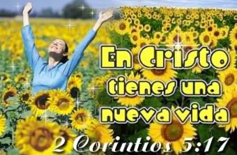 imágenes con pasajes bíblicas en medio de flores