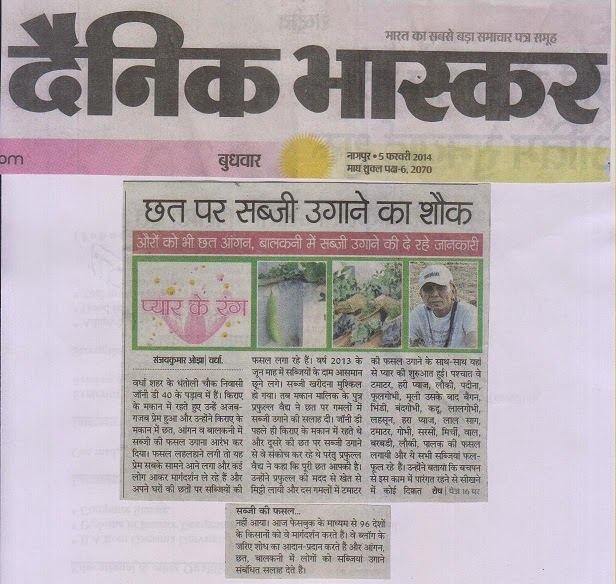 wardha news live