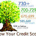 Average Credit Scores - How Do You Compare