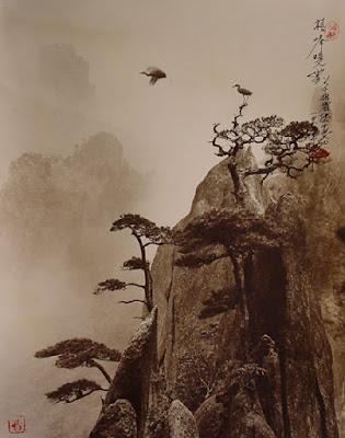 Fotografía de Don Hong Oai: árboles y montaña