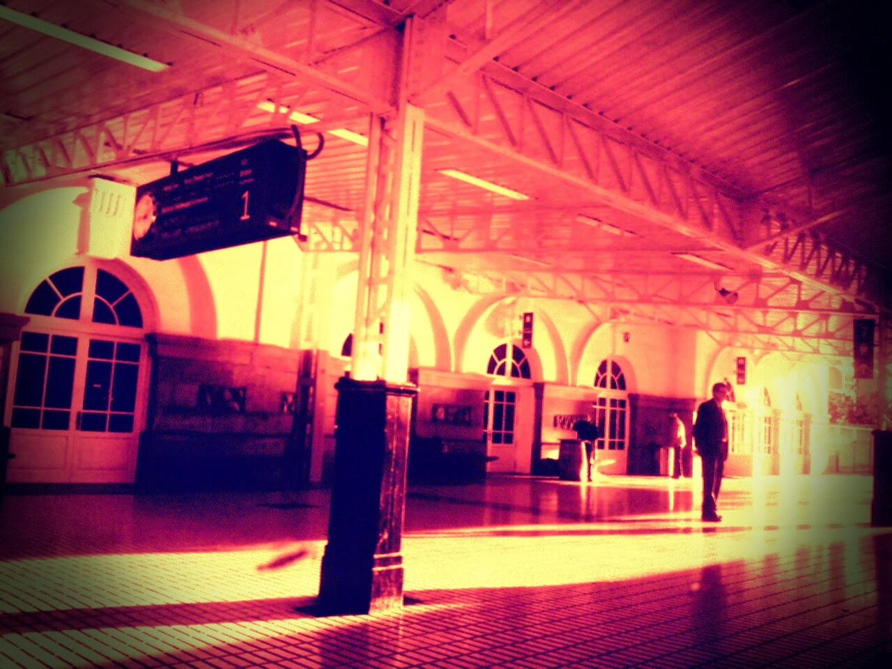 tren estacio  vitoria by c. araus