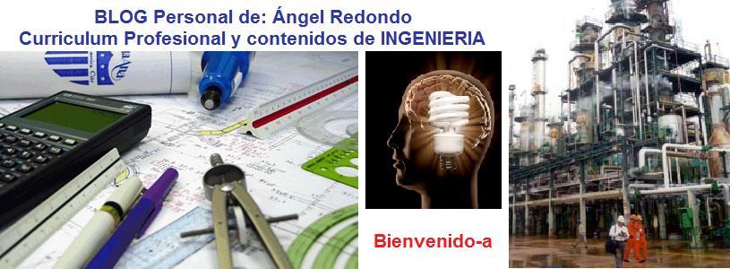 Curriculum Vitae de:    Ángel