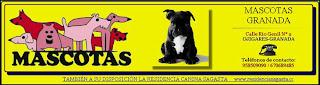 Imagen extraída de la Web: www.mascotasgranada.com