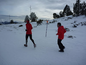 Font Romeu Trail Blanc: 51 km / 2300md+