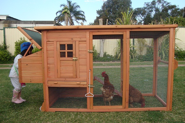 Chicken coop designs chicken coop how to for Small chicken house plans