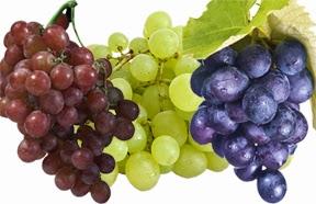 Manfaat buah anggur dan kandungan nutrisi
