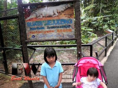 Best Place in Perak, Malaysia: Taiping Zoo & Night Safari. Ticket Fee & Operation Hour