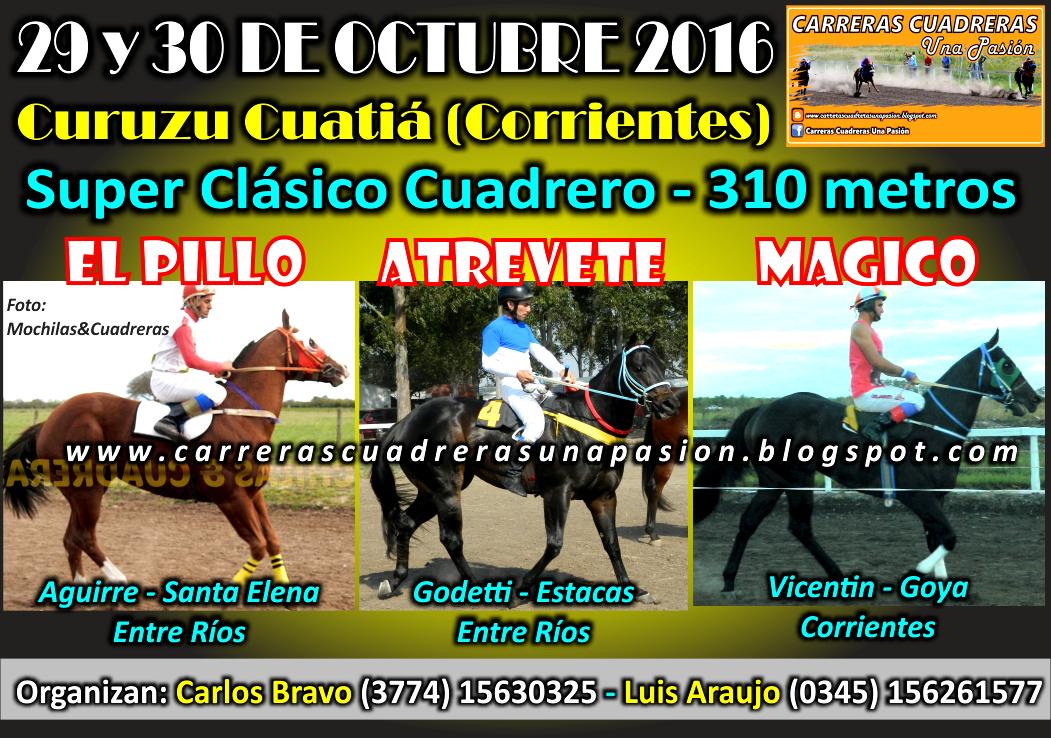 C. CUATIA - CLASICO 310