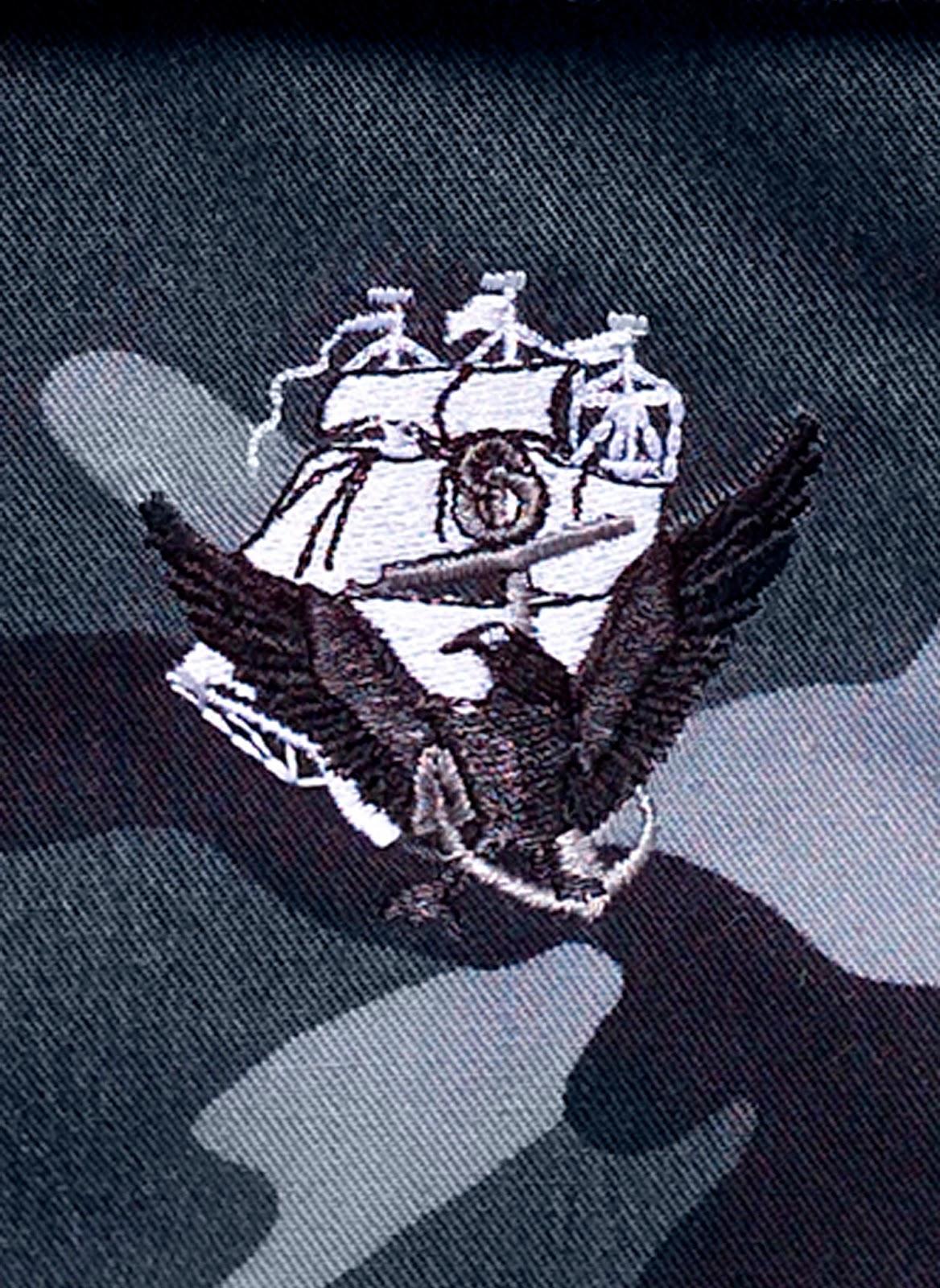 navy ace logo
