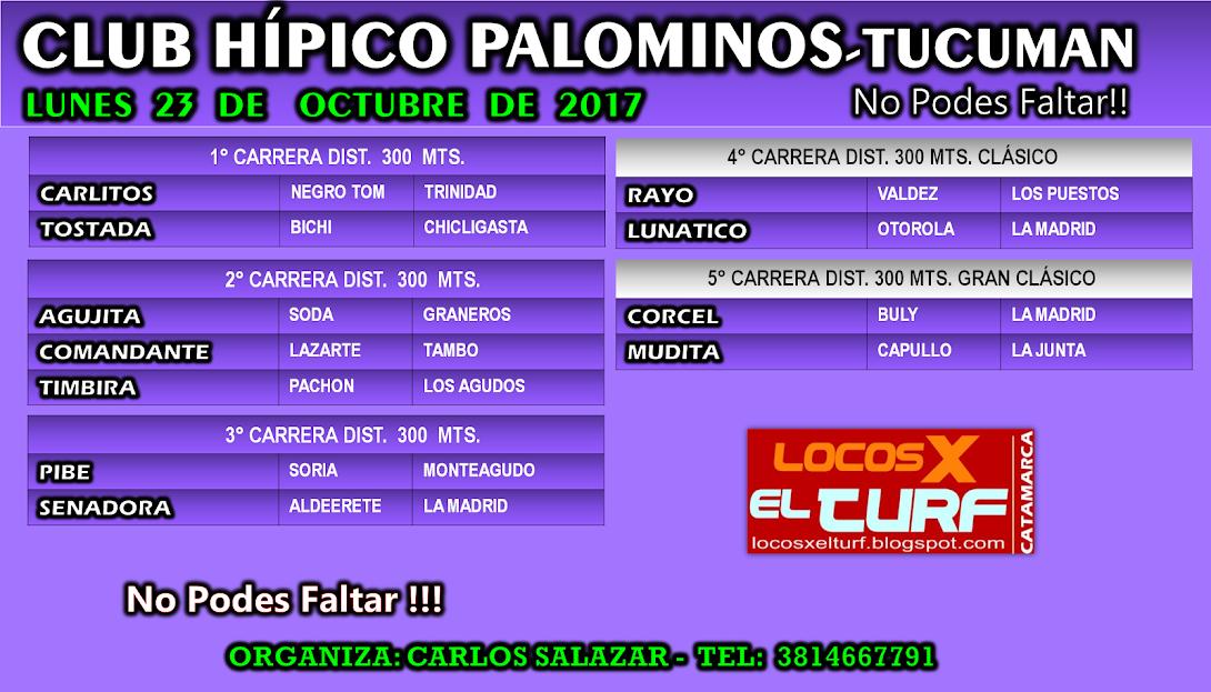 23-10-17-HIP. PALOMINOS-PROG.