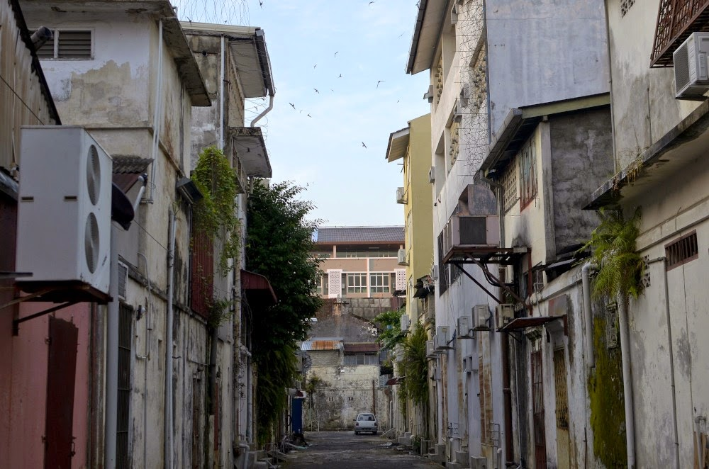 Kota Bharu banyak bangunan sarang Burung Walid