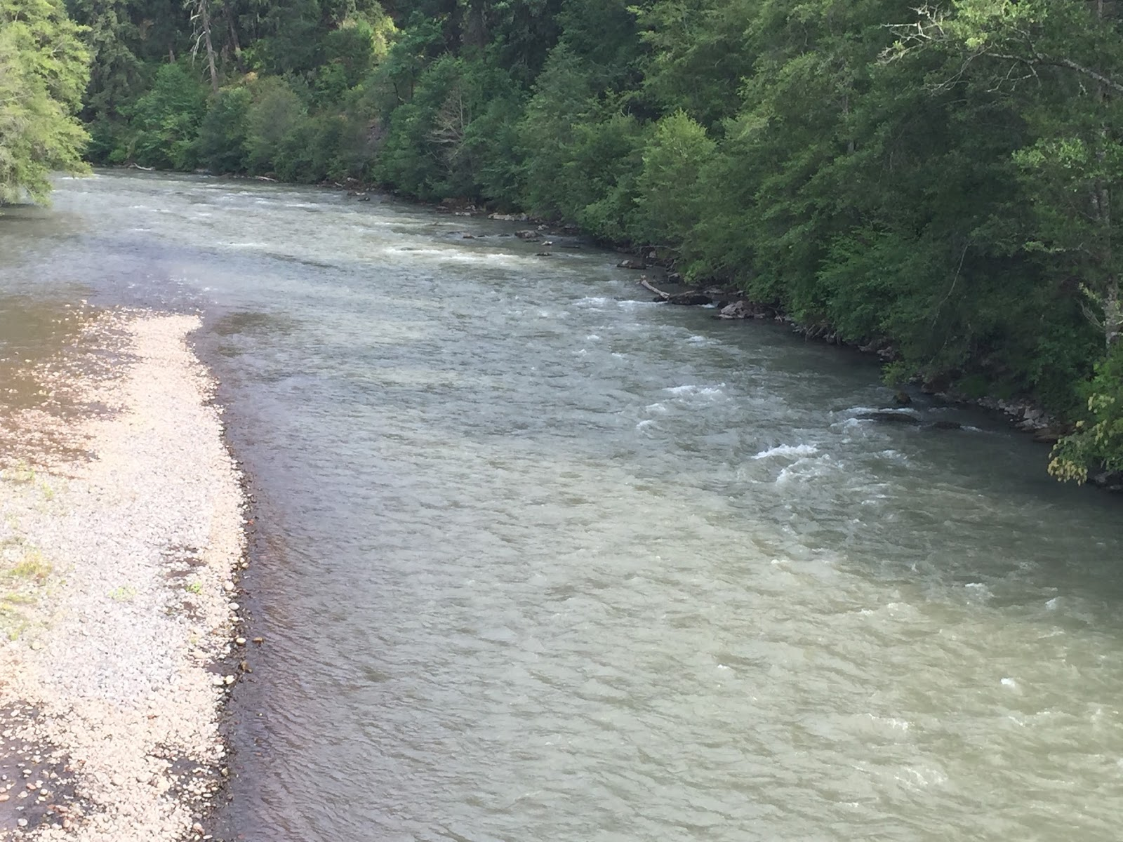 The evening hatch reports klickitat river report 7 12 15 for Klickitat river fishing report