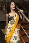 Lavanya Tripathi glam pics in saree-thumbnail-16