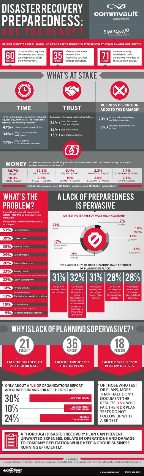 Disaster Recovery Preparedness Infographic