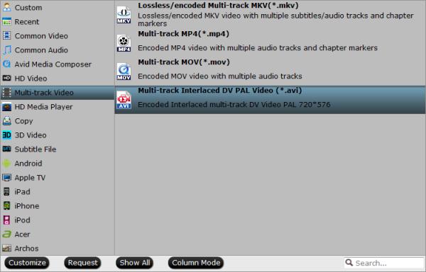 Multi-track avi format