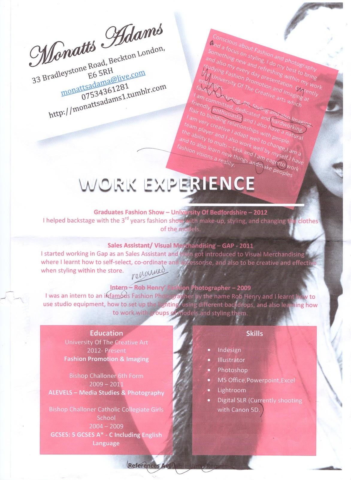 Retail merchandiser resume sample gatsby color essay retail merchandiser resume sample yelopaper Gallery