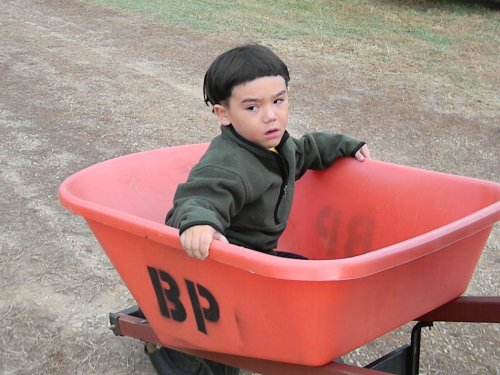 Pumpkin barrow