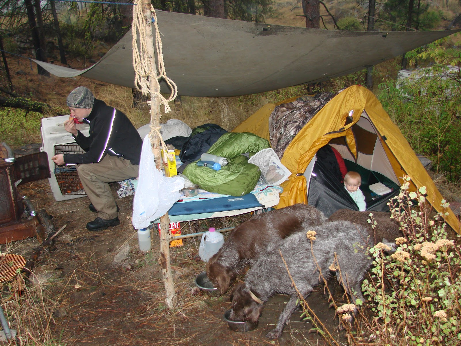 Post child as you can see little Maddy peaking from the tent at 9 months & R-Dub Outdoors: Tents Vs. Tarps