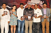 Meera Movie Audio release function photos-thumbnail-1