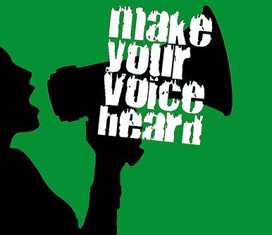 Voice Images