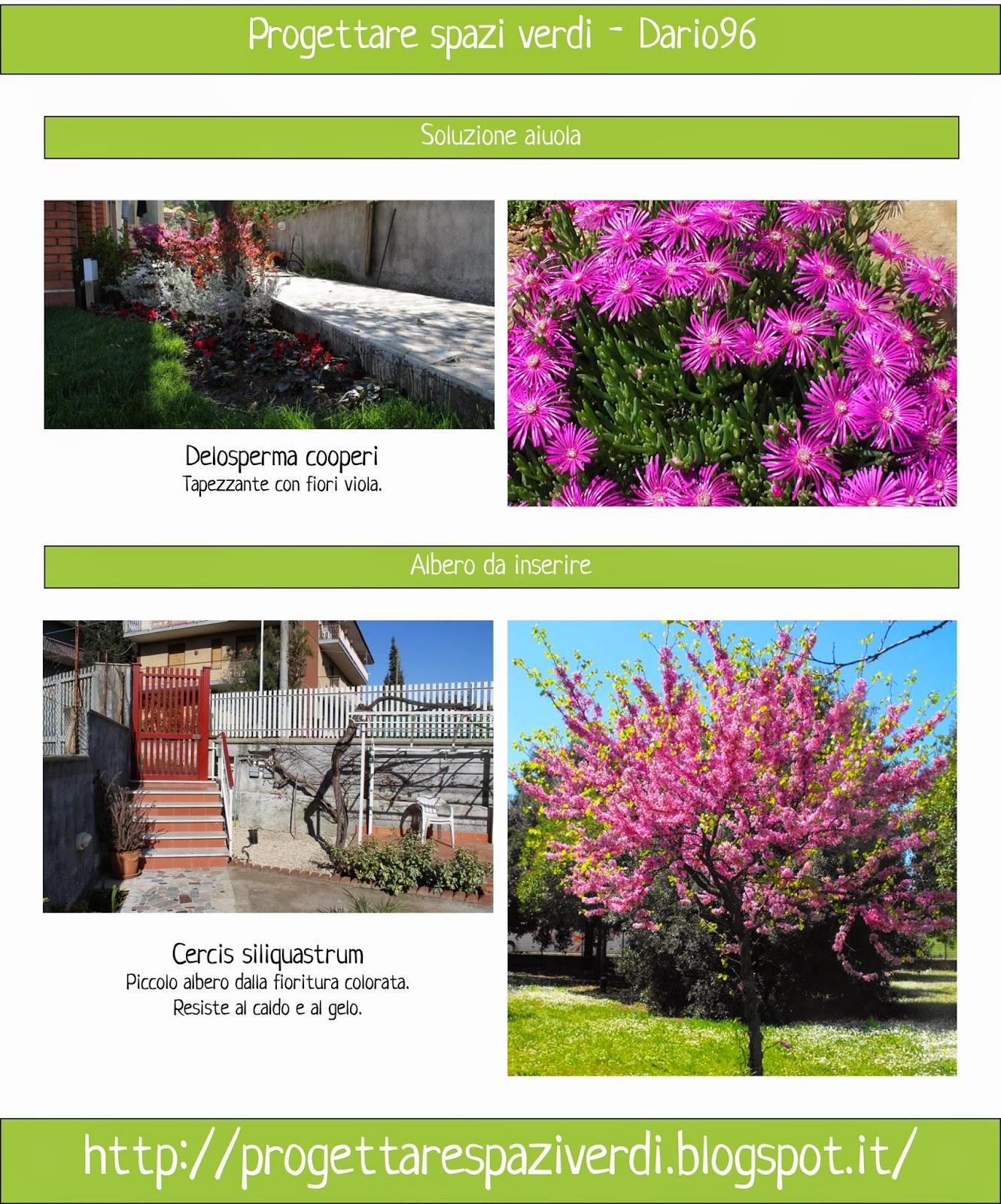 Progettare spazi verdi idee giardino dario96 for Progettare spazi verdi