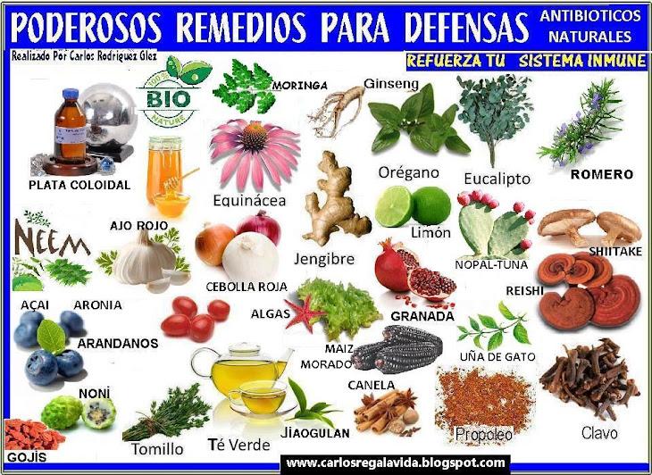 REMEDIOS NTURALES SANOS