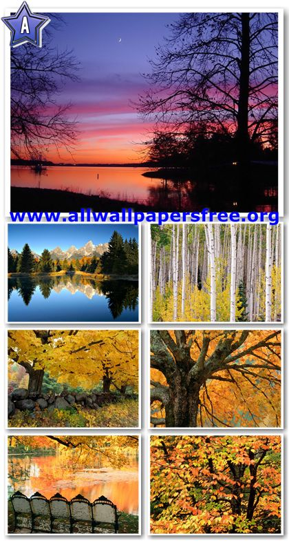 40 Beautiful Autumn Wallpapers 1280 X 1024 [Set 5]