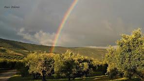 Arco Iris en el campo.