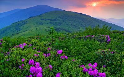 fotografías de paisajes para la portada de tu facebook