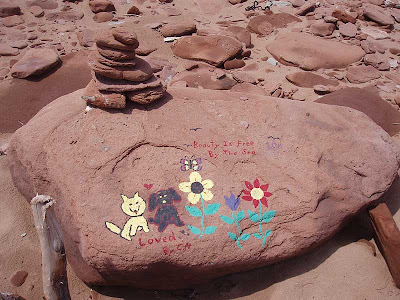 I found this message painted onto a rock while I was hunting for driftwood. They were obviously talented people but who goes to the beach with their paintbox?