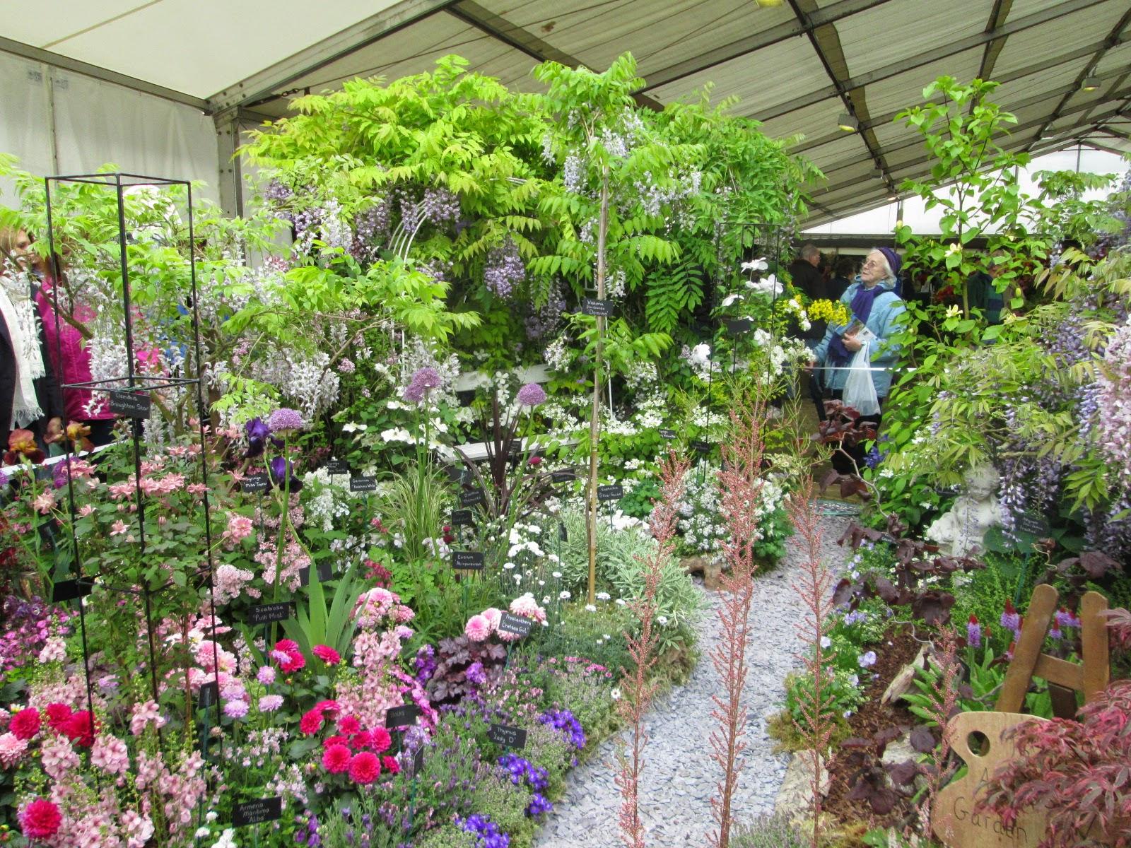 Lemon verbena lady 39 s herb garden rhs malvern spring for Garden design fest 2014