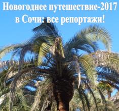Новогодний Сочи-2017