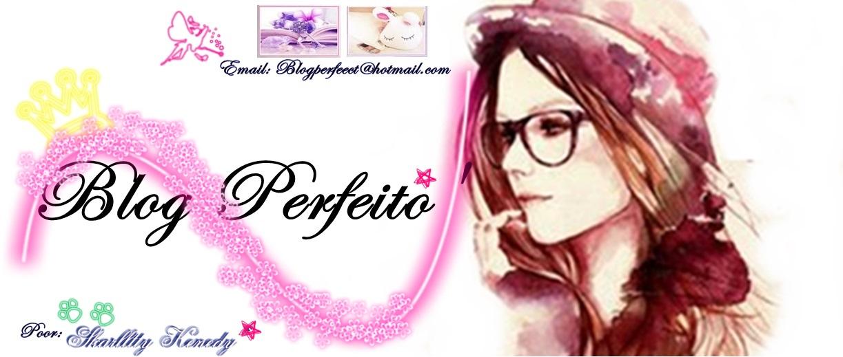 Blog Perfeito'