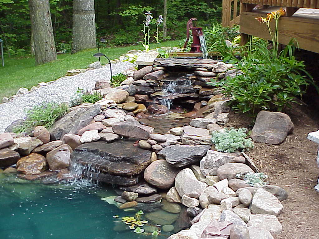 A beautiful water garden funnilogy for Water garden landscaping
