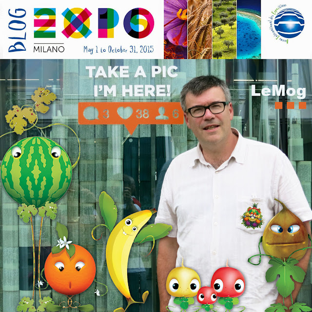 http://expo2015-milano.blogspot.fr/2015/07/social-network-links-participations-147.html