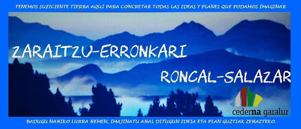RONCAL-SALAZAR
