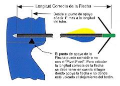 LONGITUD CORRECTA DE LA FLECHA